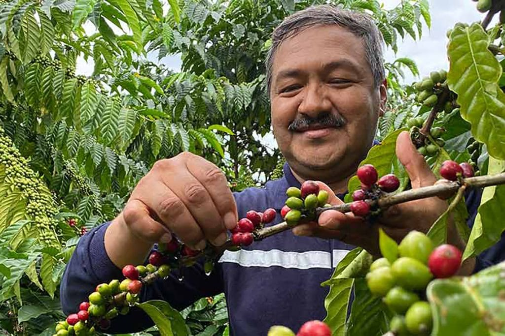 low carbon coffee